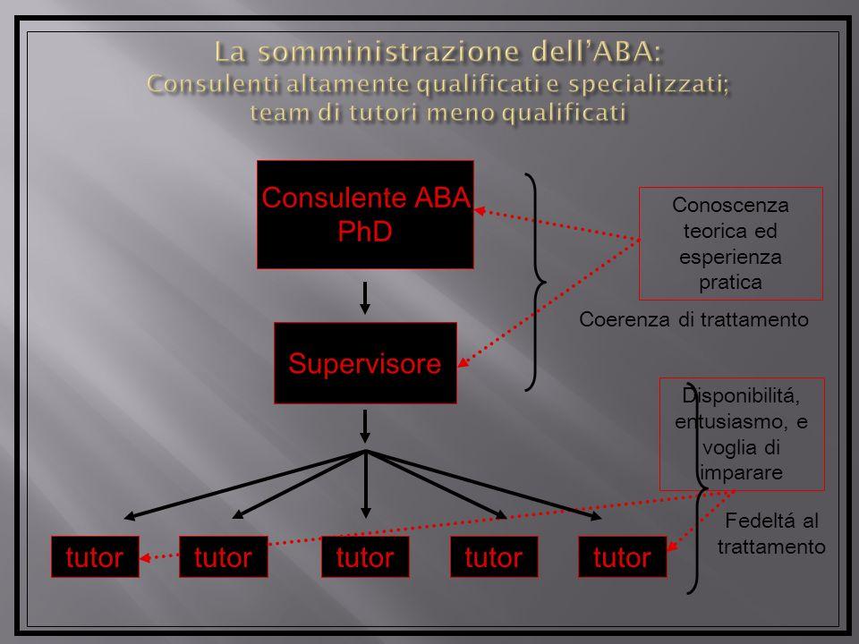La somministrazione dell'ABA: Consulenti altamente qualificati e specializzati; team di tutori meno qualificati