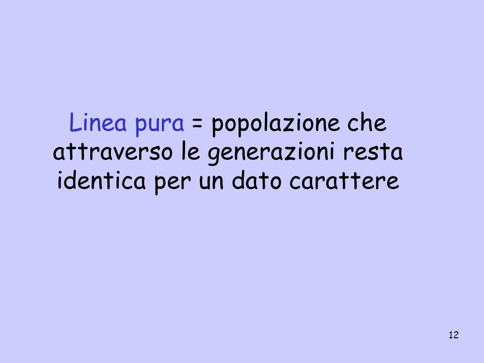 Linea pura = popolazione che attraverso le generazioni resta identica per un dato carattere