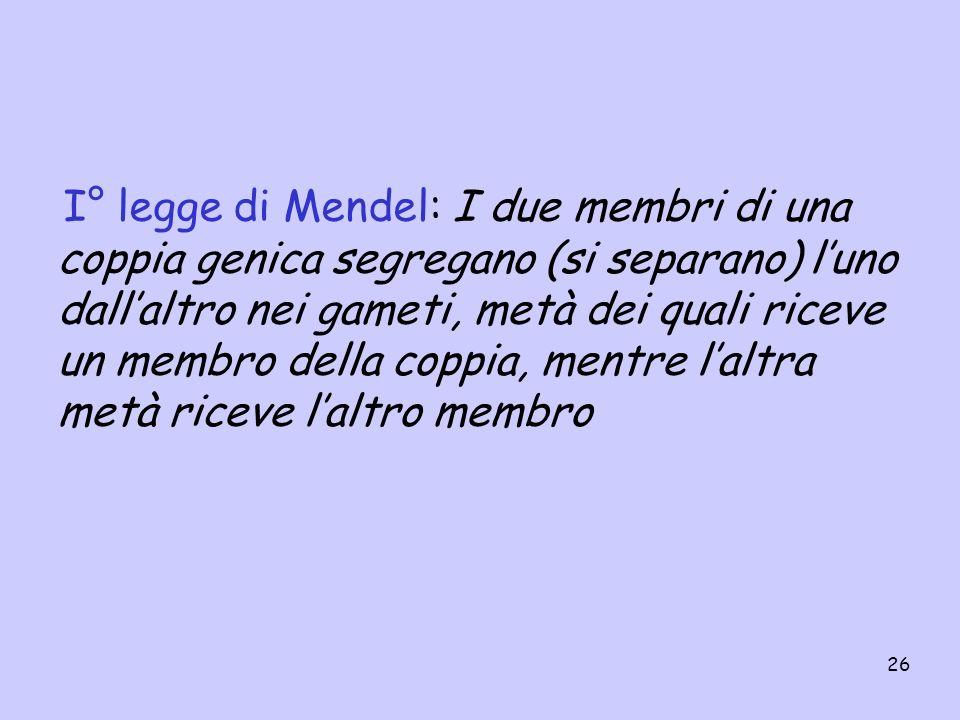 I° legge di Mendel: I due membri di una coppia genica segregano (si separano) l'uno dall'altro nei gameti, metà dei quali riceve un membro della coppia, mentre l'altra metà riceve l'altro membro