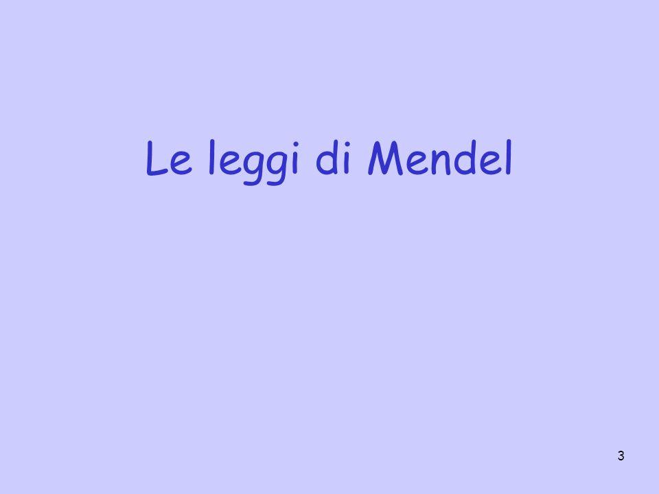 Le leggi di Mendel