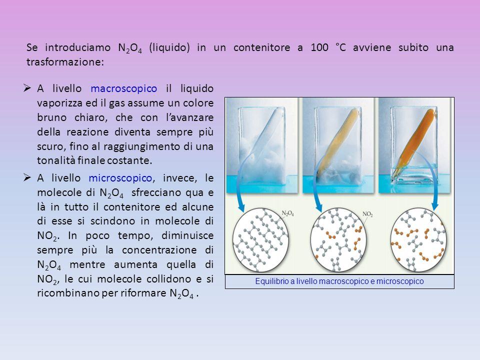 Equilibrio a livello macroscopico e microscopico