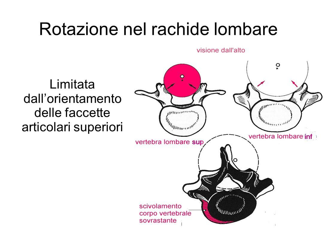 Rotazione nel rachide lombare