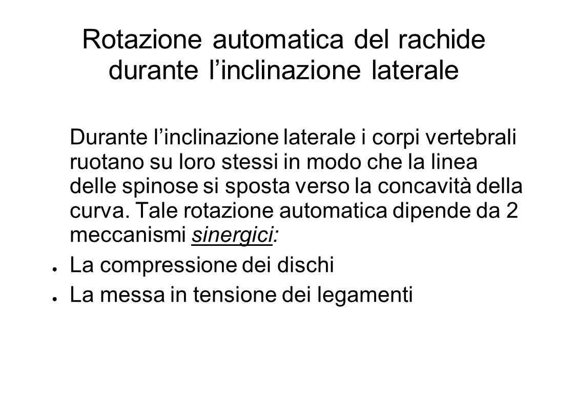 Rotazione automatica del rachide durante l'inclinazione laterale