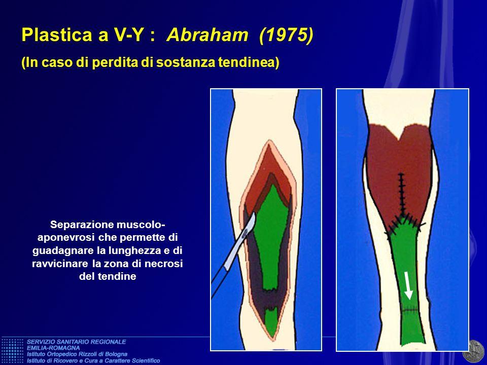 Plastica a V-Y : Abraham (1975)