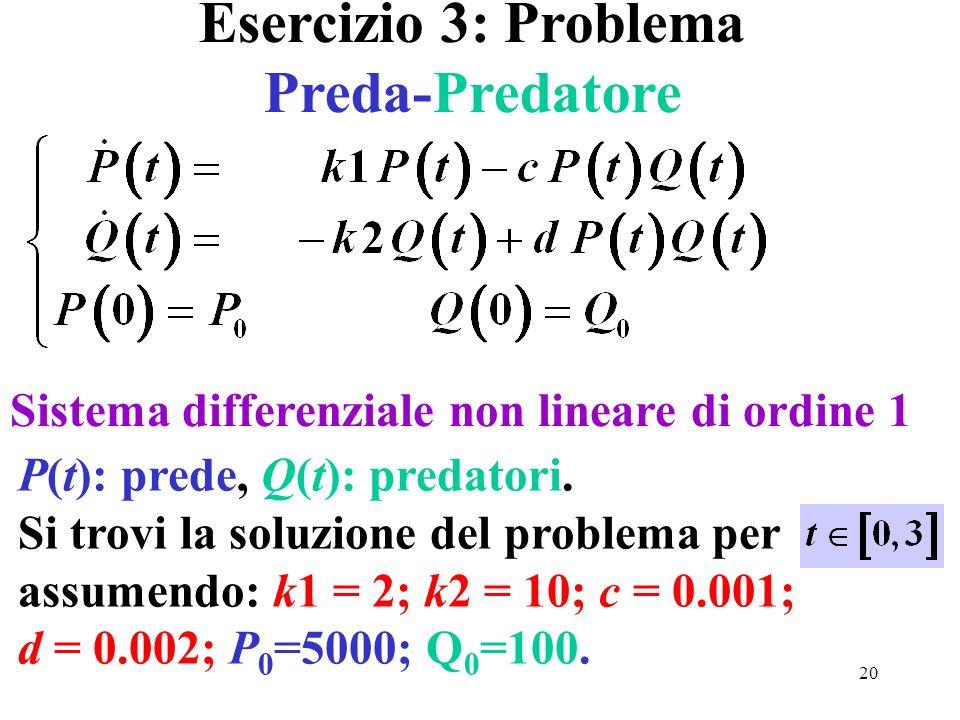 Esercizio 3: Problema Preda-Predatore