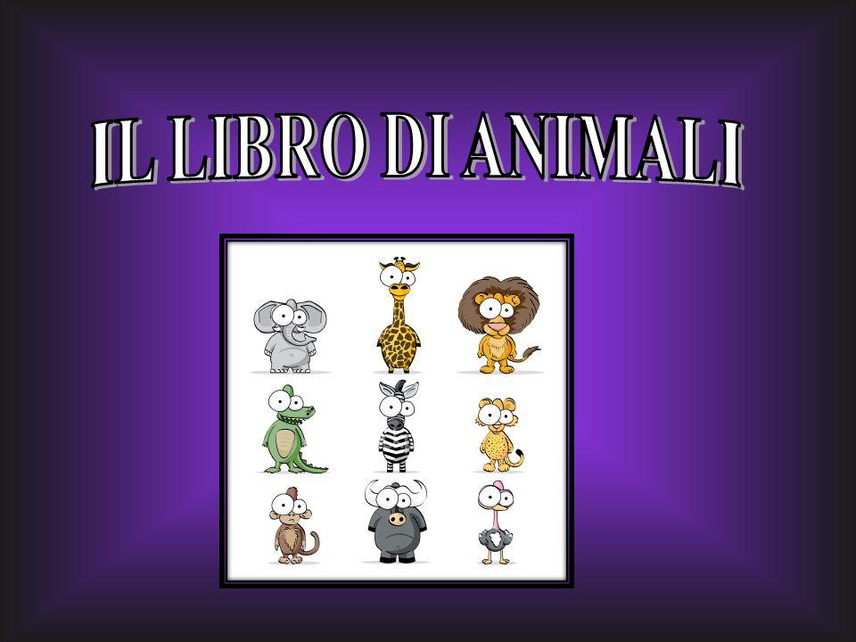 IL LIBRO DI ANIMALI