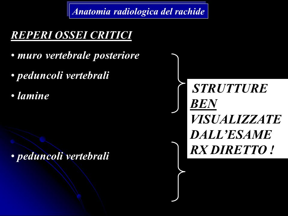 muro vertebrale posteriore peduncoli vertebrali lamine
