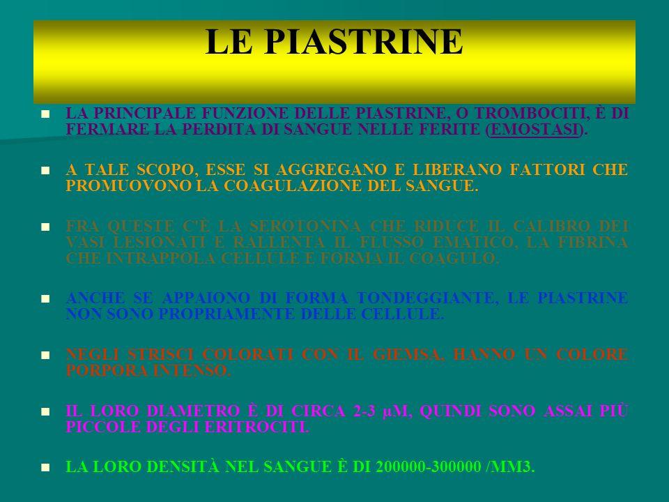 LE PIASTRINE LA PRINCIPALE FUNZIONE DELLE PIASTRINE, O TROMBOCITI, È DI FERMARE LA PERDITA DI SANGUE NELLE FERITE (EMOSTASI).