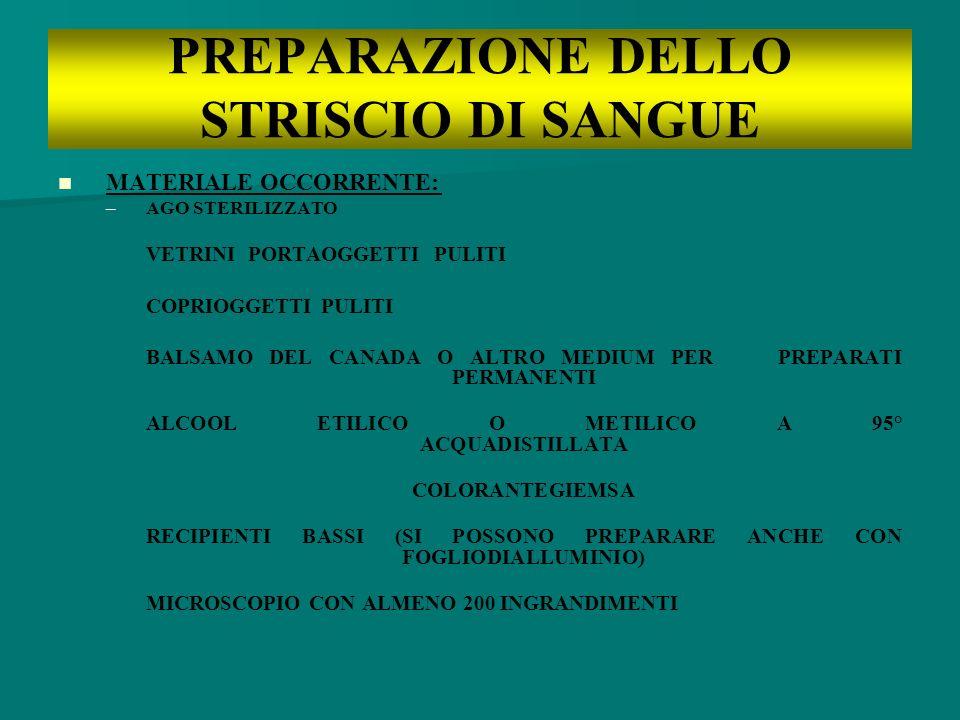 PREPARAZIONE DELLO STRISCIO DI SANGUE