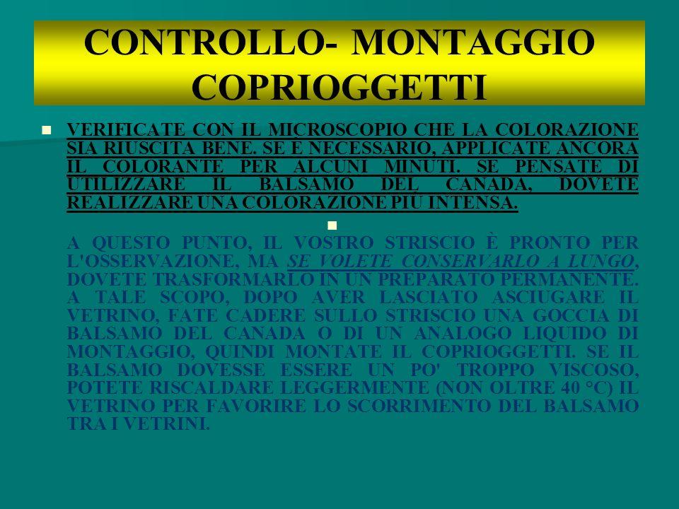 CONTROLLO- MONTAGGIO COPRIOGGETTI