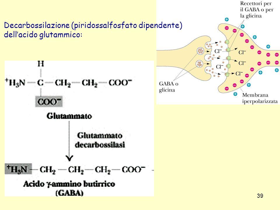 Decarbossilazione (piridossalfosfato dipendente)