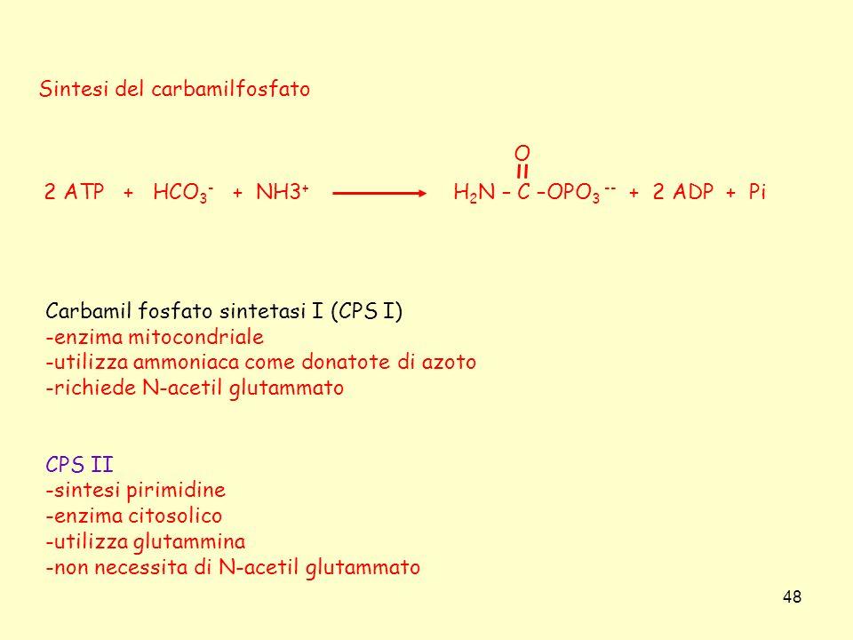 Sintesi del carbamilfosfato