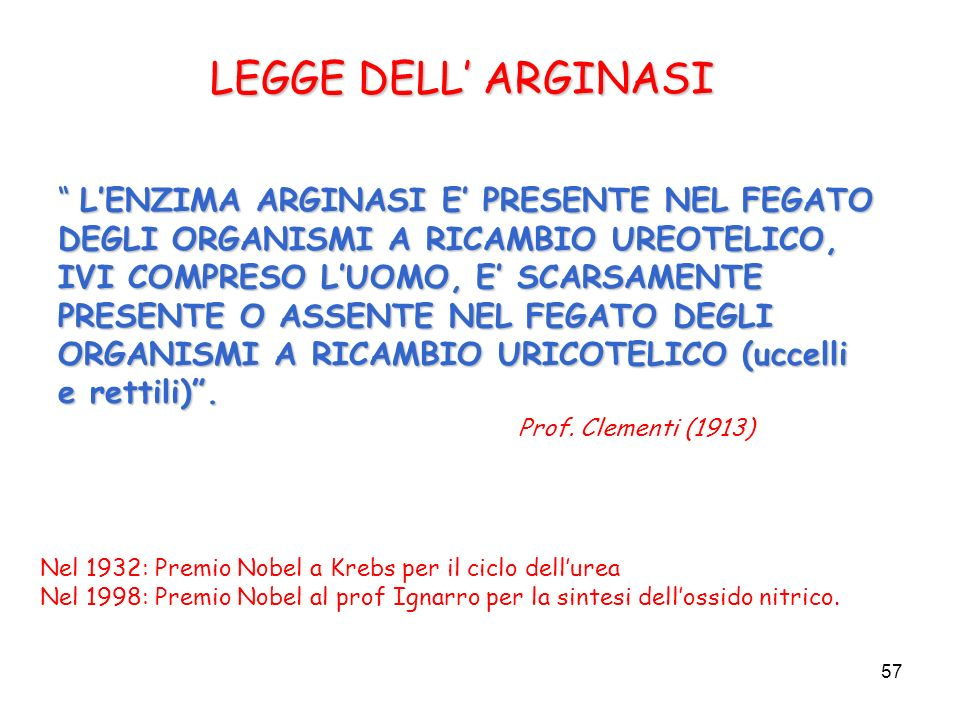 LEGGE DELL' ARGINASI
