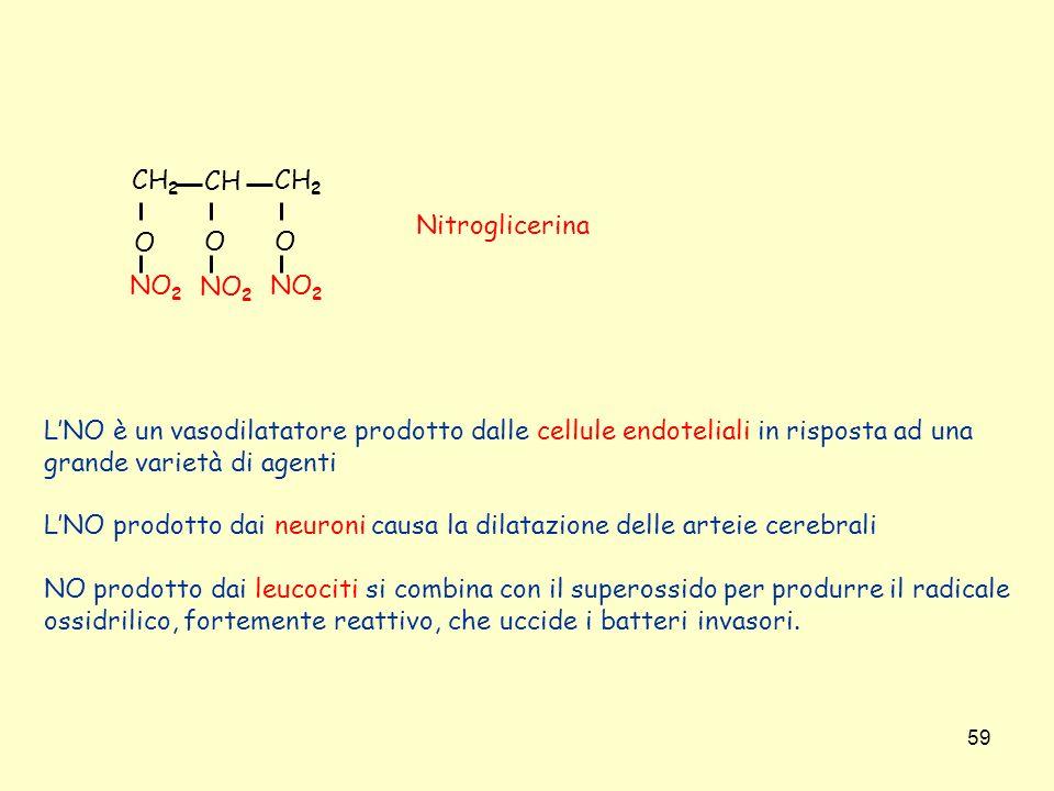 CH2 CH. O. NO2. Nitroglicerina. L'NO è un vasodilatatore prodotto dalle cellule endoteliali in risposta ad una.