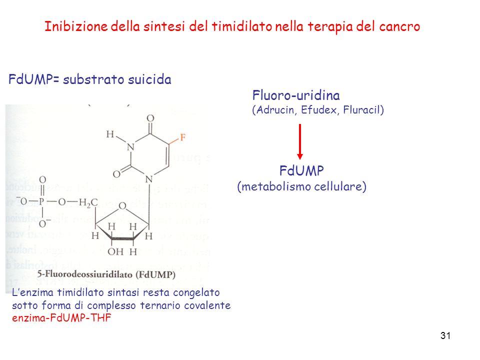 (metabolismo cellulare)