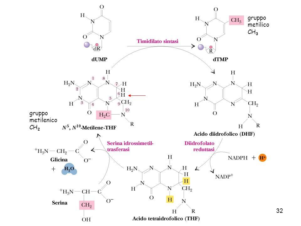 gruppo metilico CH3 gruppo metilenico CH2