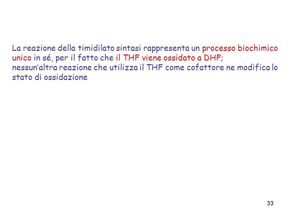 La reazione della timidilato sintasi rappresenta un processo biochimico unico in sé, per il fatto che il THF viene ossidato a DHF;