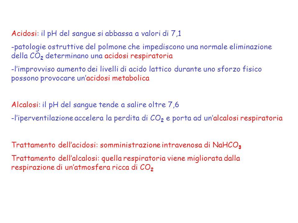 Acidosi: il pH del sangue si abbassa a valori di 7,1