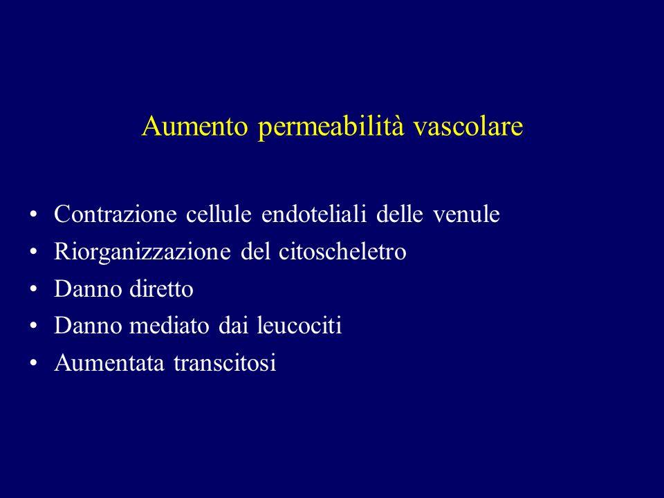 Aumento permeabilità vascolare