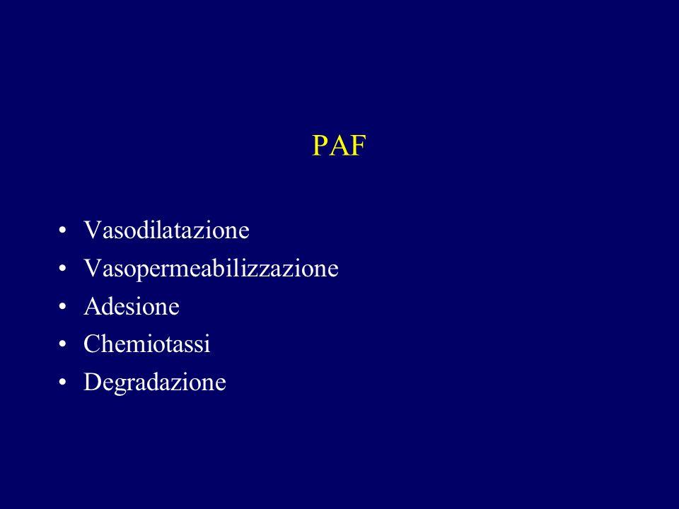 PAF Vasodilatazione Vasopermeabilizzazione Adesione Chemiotassi