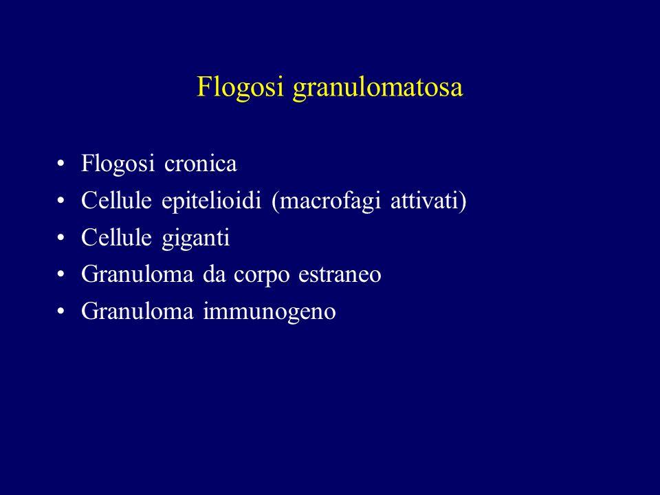 Flogosi granulomatosa