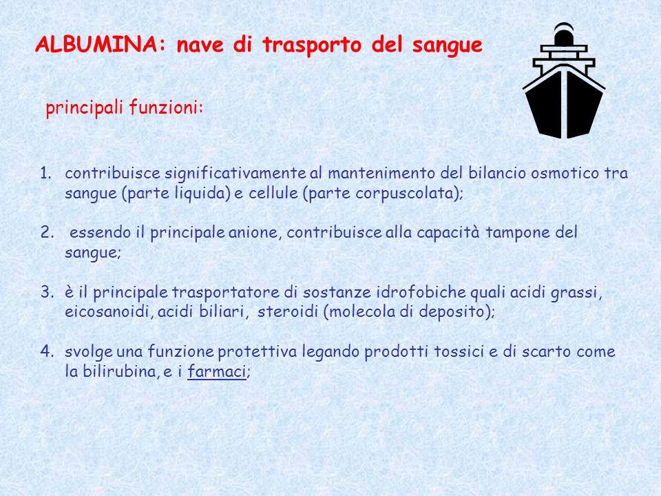 ALBUMINA: nave di trasporto del sangue