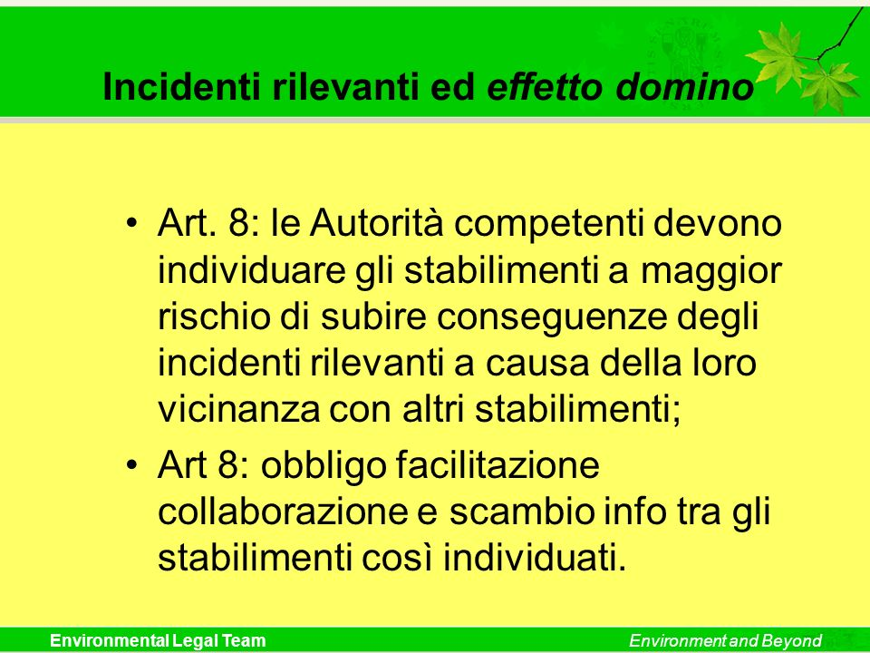 Incidenti rilevanti ed effetto domino