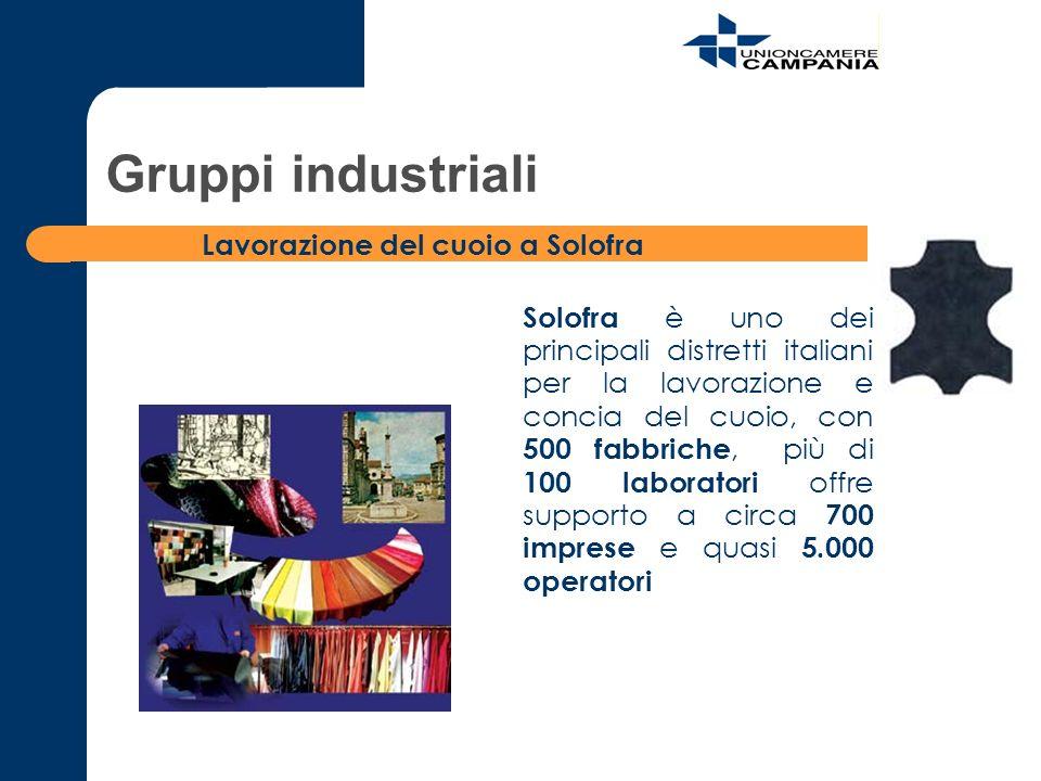 Gruppi industriali Lavorazione del cuoio a Solofra