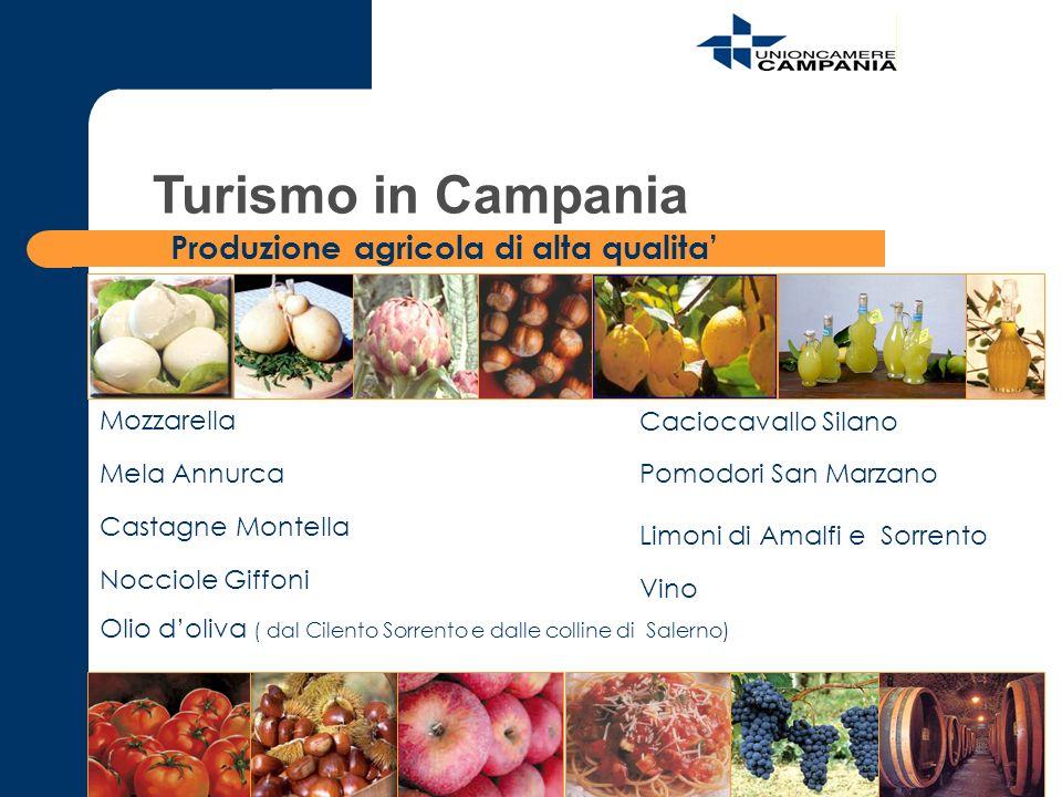 Turismo in Campania Produzione agricola di alta qualita' Mozzarella