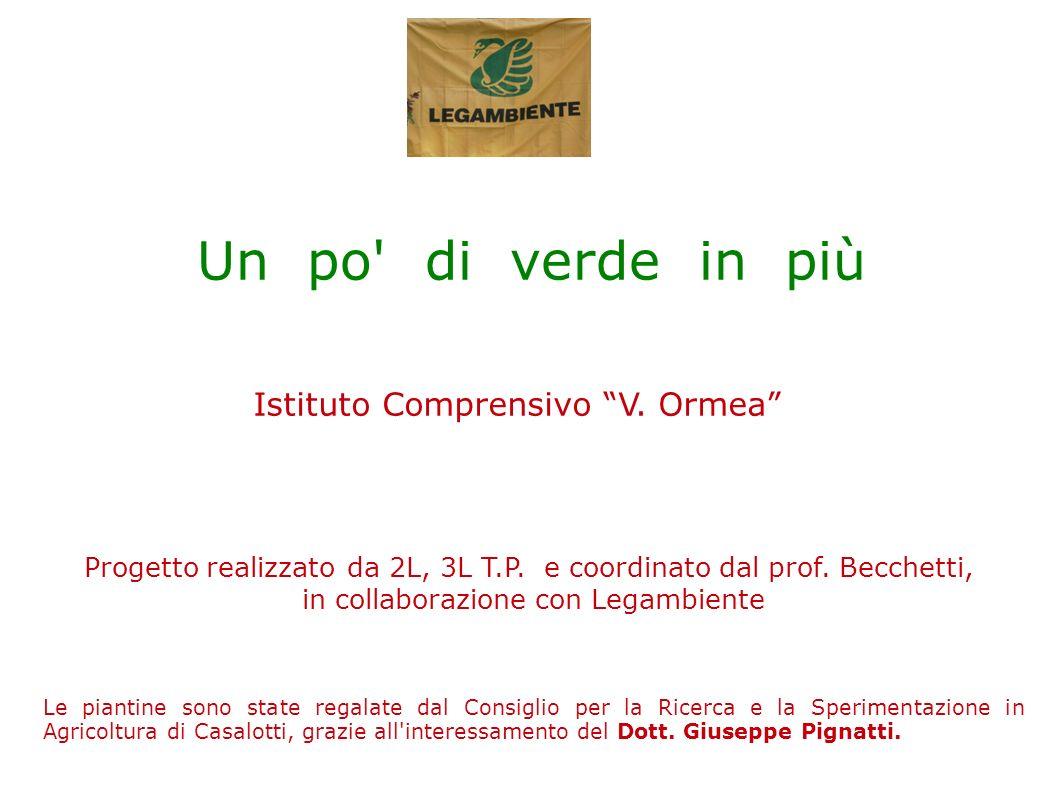 Un po di verde in più Istituto Comprensivo V. Ormea