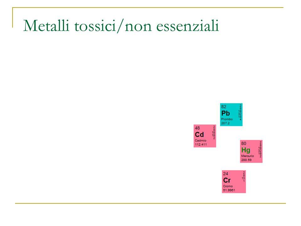Metalli tossici/non essenziali