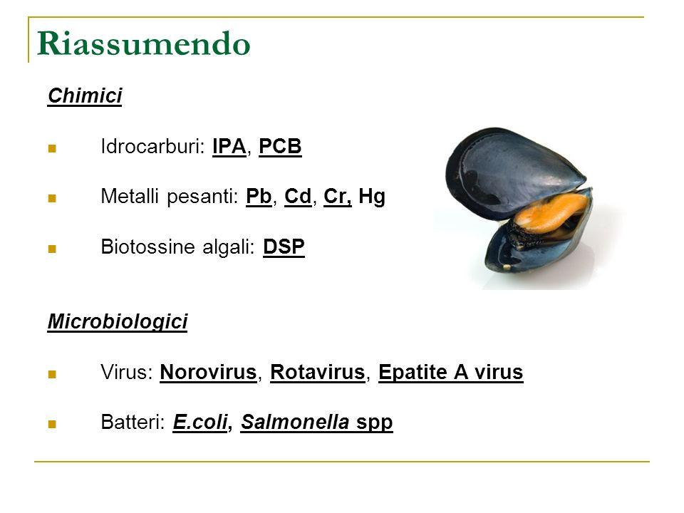 Riassumendo Chimici Idrocarburi: IPA, PCB