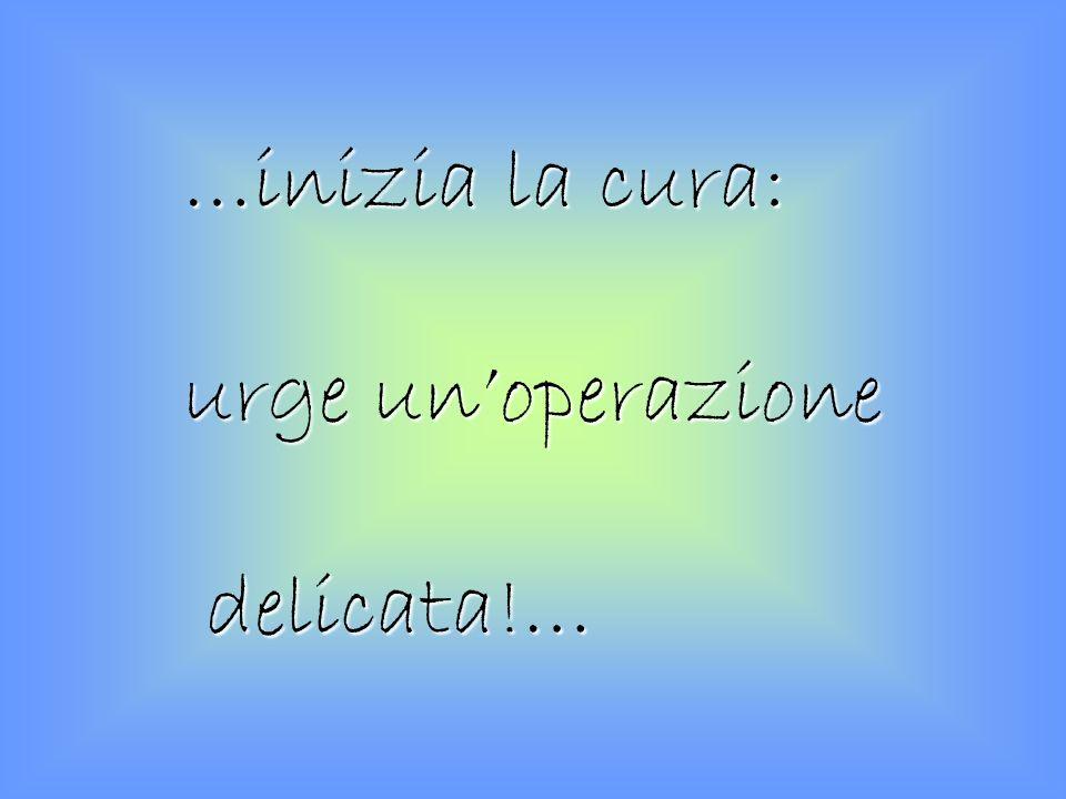 …inizia la cura: urge un'operazione delicata!…