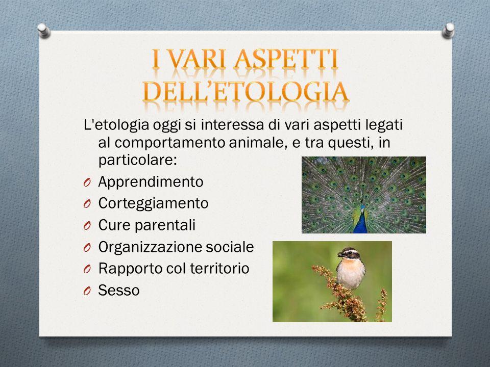 L etologia oggi si interessa di vari aspetti legati al comportamento animale, e tra questi, in particolare: