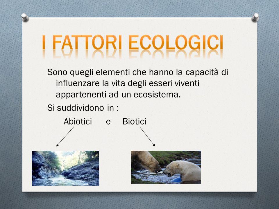 Sono quegli elementi che hanno la capacità di influenzare la vita degli esseri viventi appartenenti ad un ecosistema.