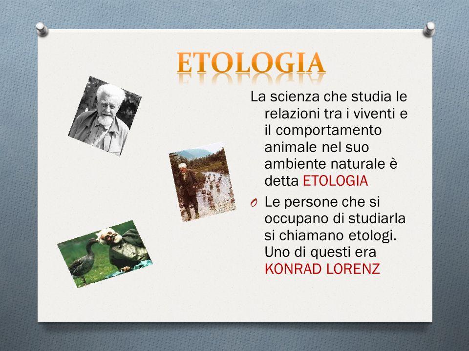La scienza che studia le relazioni tra i viventi e il comportamento animale nel suo ambiente naturale è detta ETOLOGIA