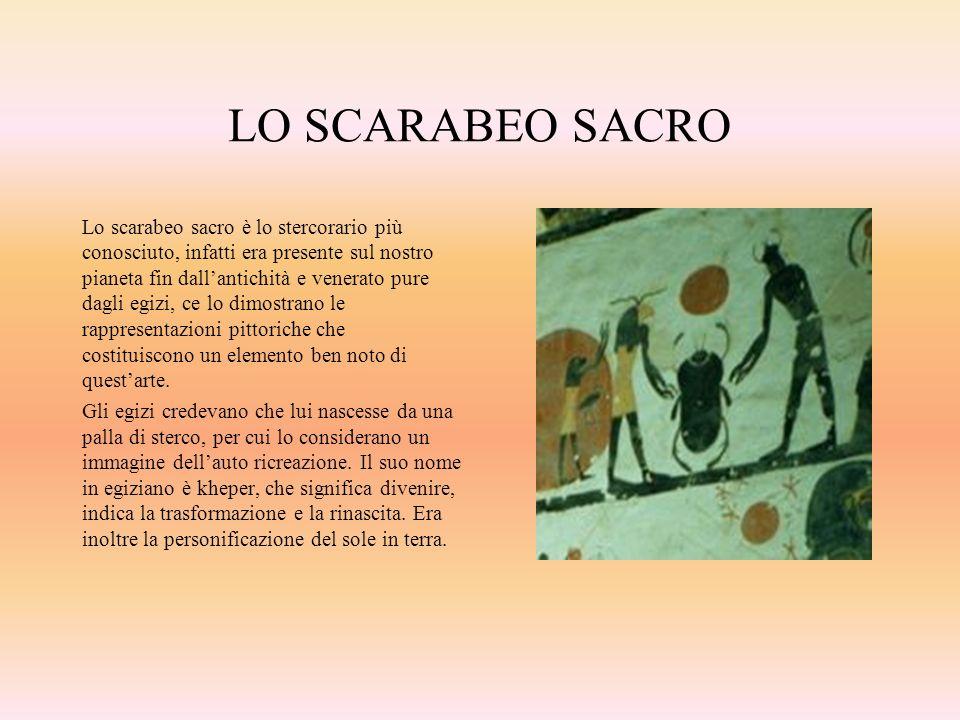 LO SCARABEO SACRO