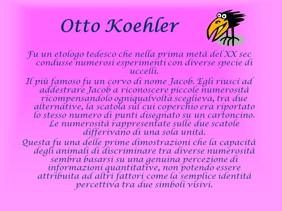 Otto Koehler Fu un etologo tedesco che nella prima metà del XX sec condusse numerosi esperimenti con diverse specie di uccelli.