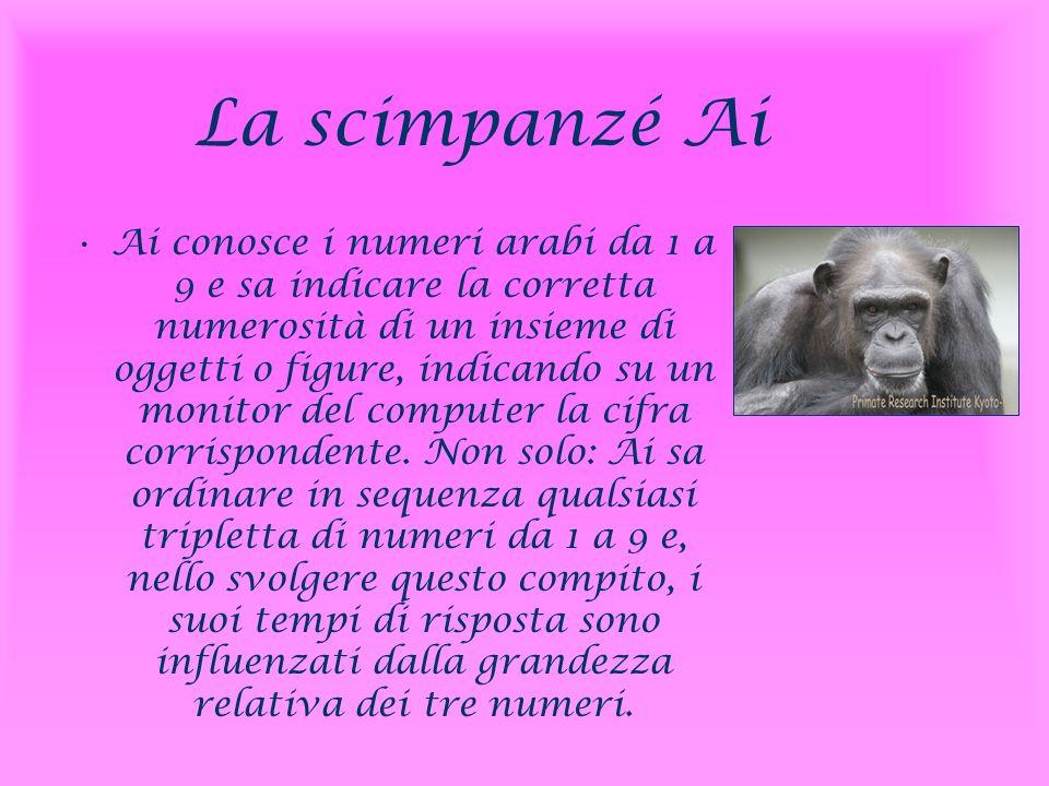 La scimpanzé Ai