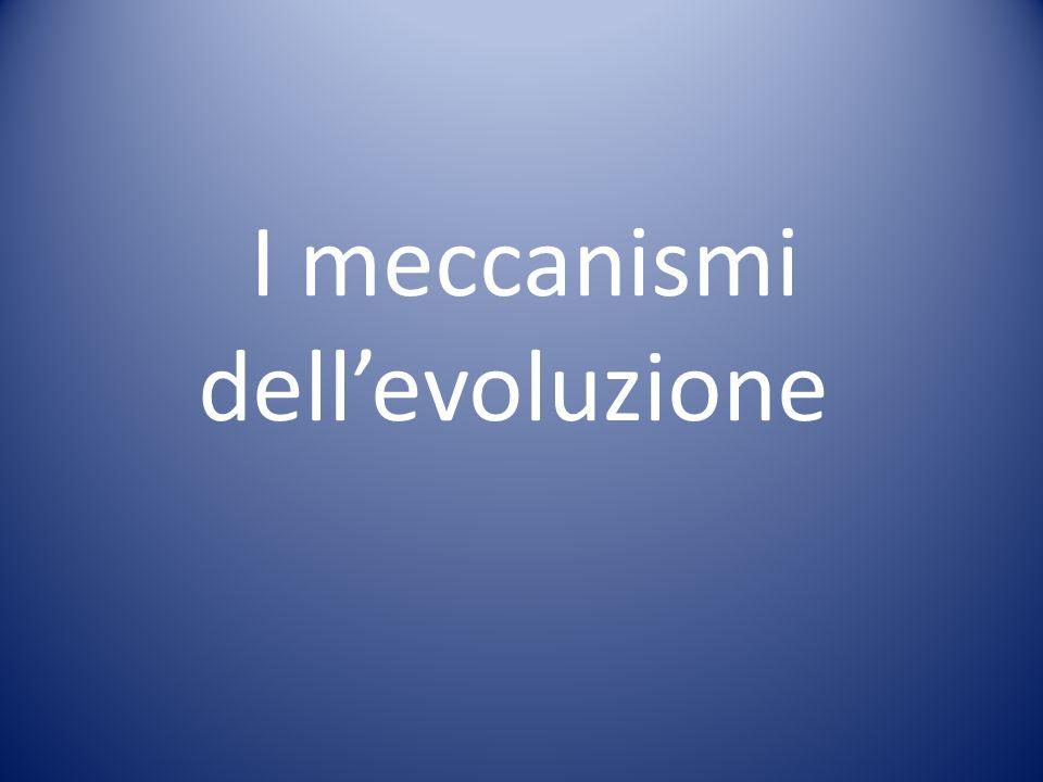 I meccanismi dell'evoluzione