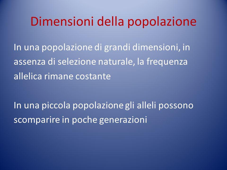 Dimensioni della popolazione
