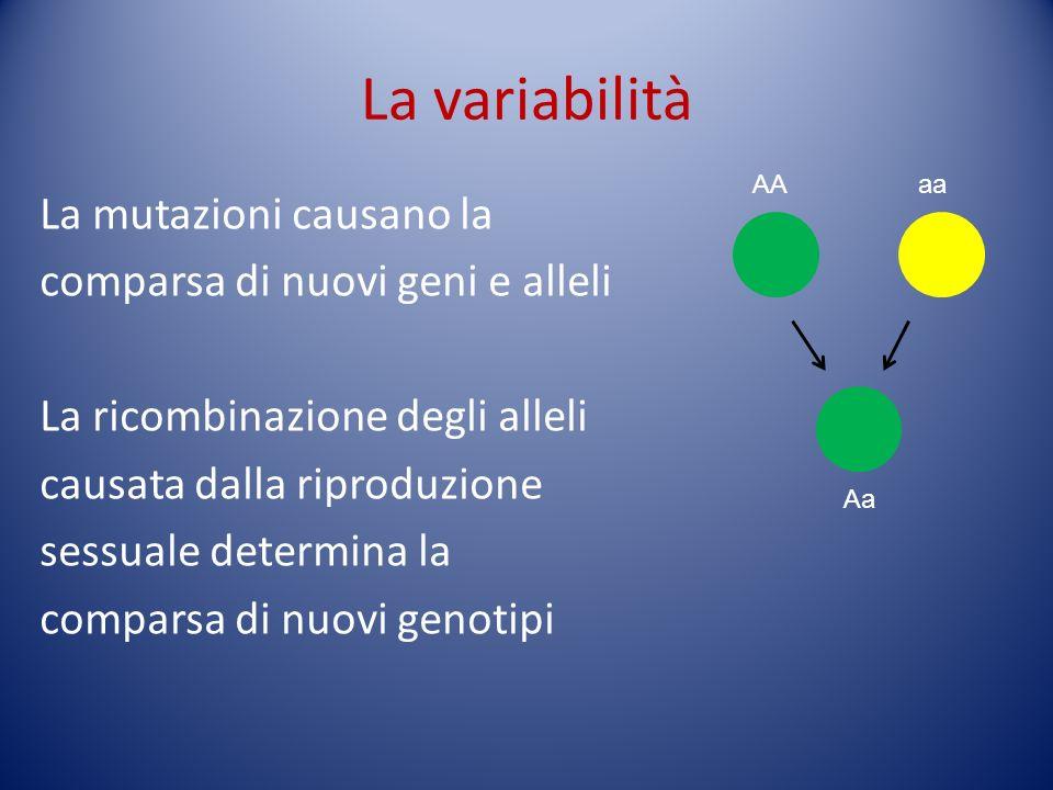 La variabilitàAA. aa.