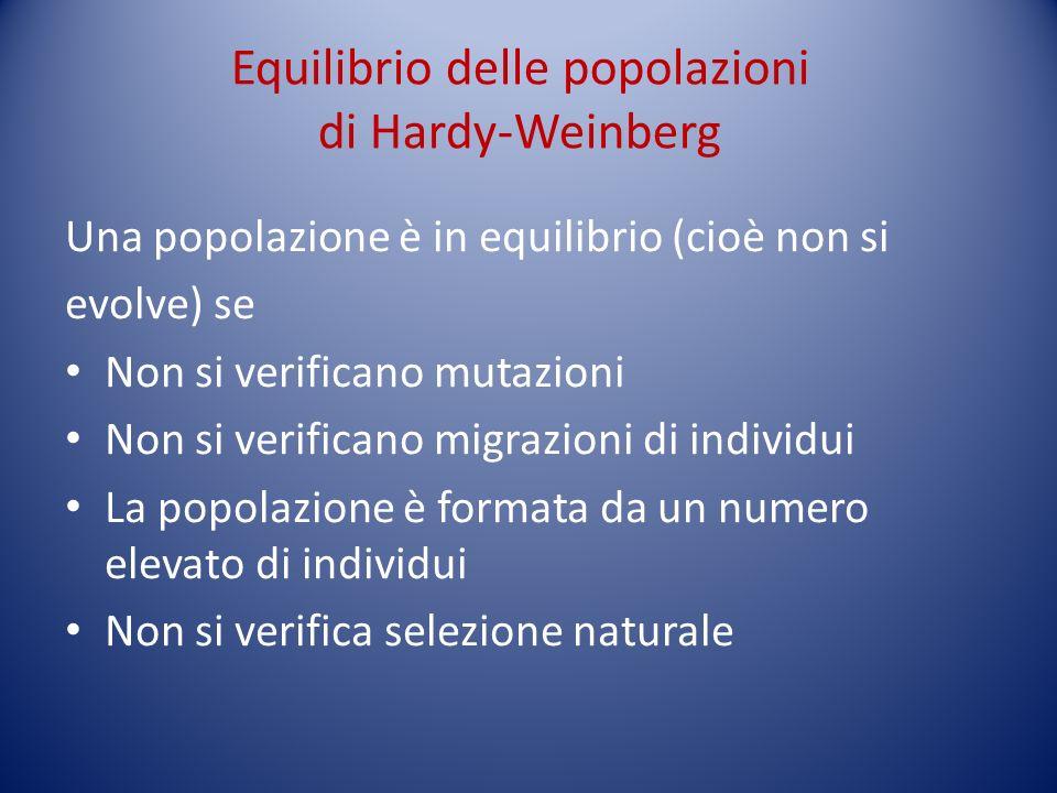 Equilibrio delle popolazioni di Hardy-Weinberg