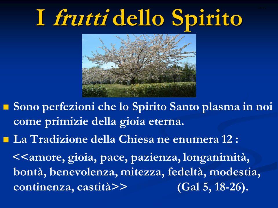 I frutti dello Spirito ritardo. Sono perfezioni che lo Spirito Santo plasma in noi come primizie della gioia eterna.