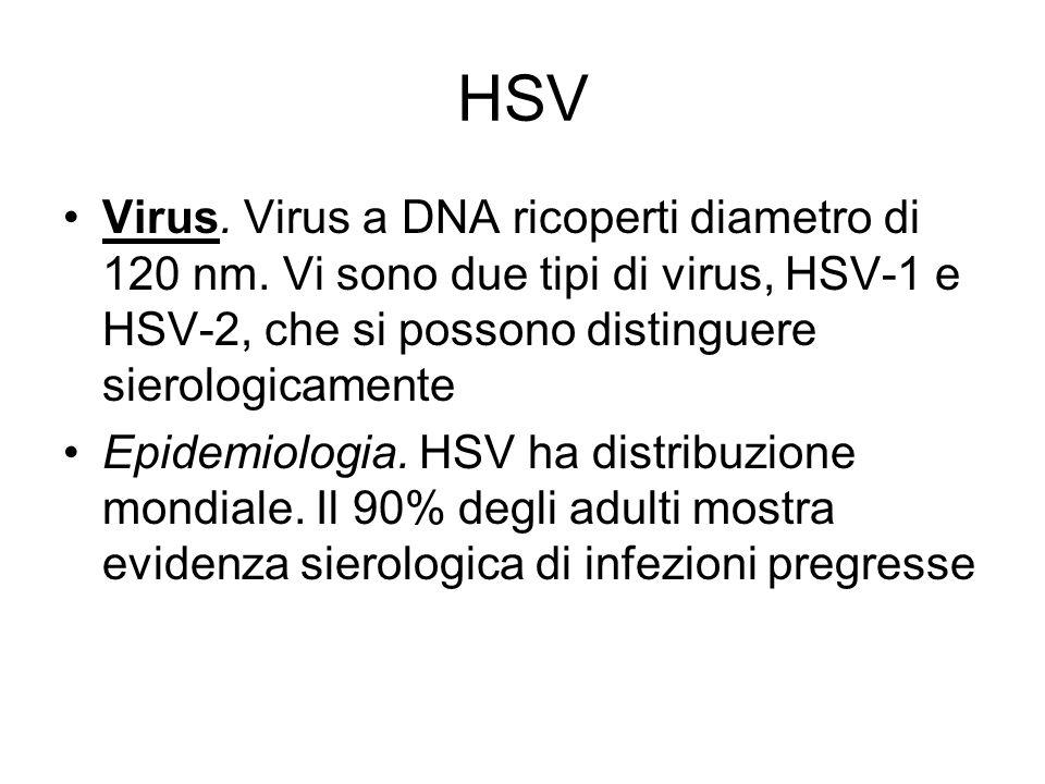 HSVVirus. Virus a DNA ricoperti diametro di 120 nm. Vi sono due tipi di virus, HSV-1 e HSV-2, che si possono distinguere sierologicamente.