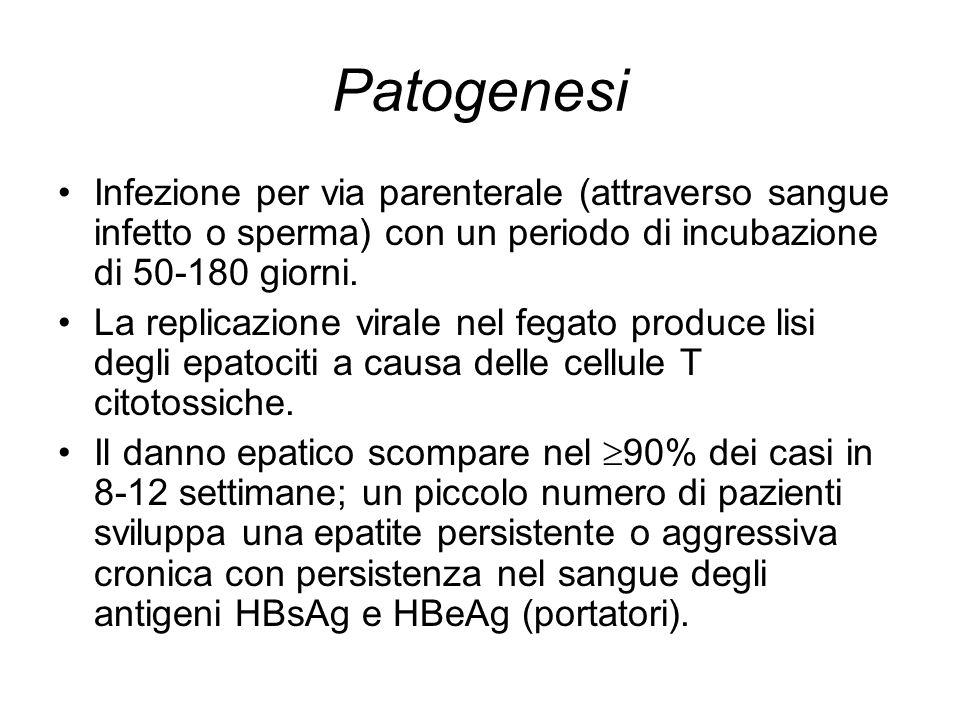 Patogenesi Infezione per via parenterale (attraverso sangue infetto o sperma) con un periodo di incubazione di 50-180 giorni.