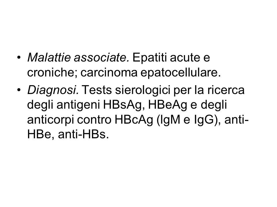 Malattie associate. Epatiti acute e croniche; carcinoma epatocellulare.