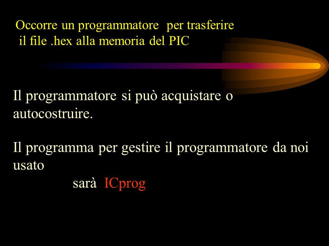 Il programmatore si può acquistare o autocostruire.