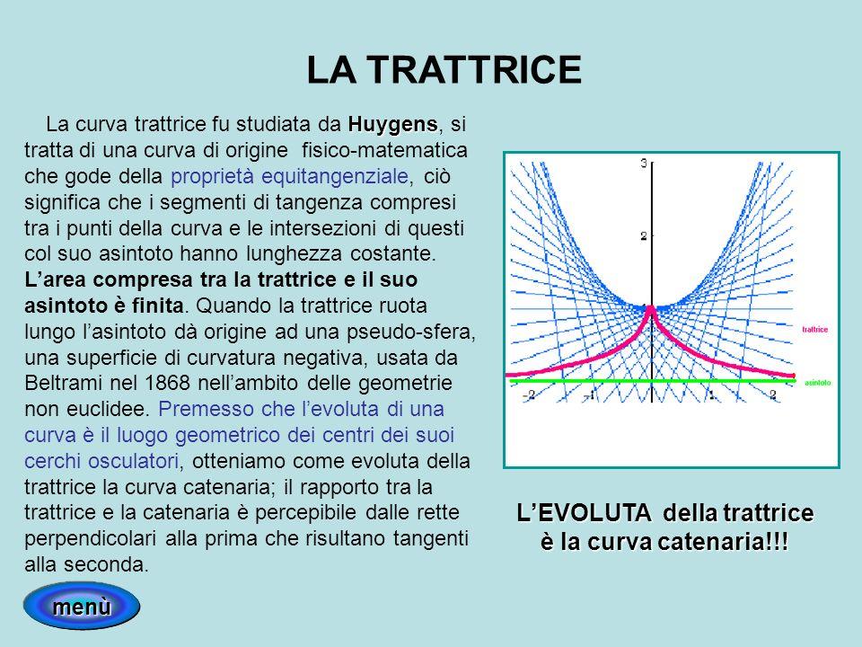 L'EVOLUTA della trattrice è la curva catenaria!!!