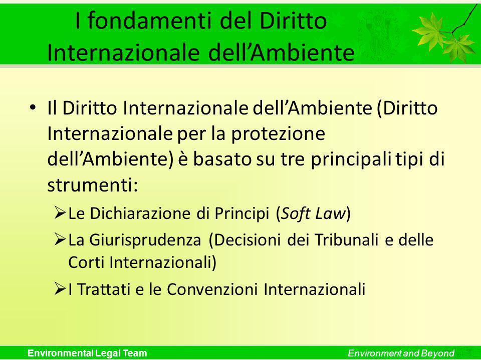 I fondamenti del Diritto Internazionale dell'Ambiente
